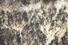 Roccia ed alberi Fotografie Stock