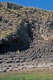 Roccia eruttiva Immagini Stock