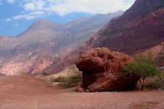 roccia a forma di animale nelle Ande Fotografia Stock