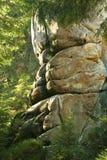 Roccia in foschia della foresta Fotografia Stock Libera da Diritti