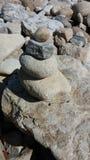 Roccia fossile Immagini Stock