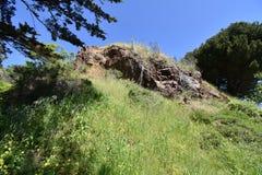 Roccia francescana della selce cornea dall'età dei rettili, Corona Heights Park San Francisco, 1 immagini stock libere da diritti