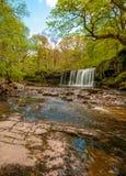 Roccia fresca del fiume del calcare e della cascata fotografie stock libere da diritti