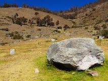 Roccia gigante in mezzo al campo immagine stock libera da diritti