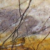 Roccia incrinata Immagini Stock