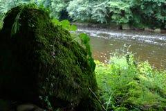 Roccia invasa accanto al fiume fotografie stock