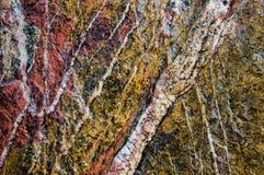 Roccia metamorfica della quarzite con il reticolo Fotografia Stock