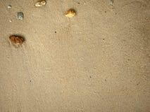 roccia minuscola sul fondo della spiaggia sabbiosa immagine stock libera da diritti
