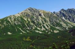 Roccia in montagne Immagine Stock Libera da Diritti
