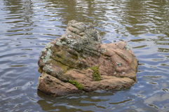 Roccia nel lago Immagini Stock