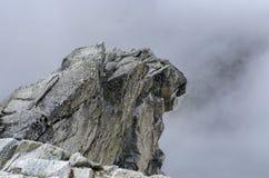 Roccia nel Tatras Fotografia Stock Libera da Diritti