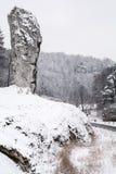 Roccia nell'inverno Fotografie Stock