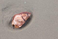 Roccia rossa sulla spiaggia di sabbia Fotografia Stock