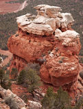 Roccia sottomarina gialla a Zion National Park Immagine Stock Libera da Diritti