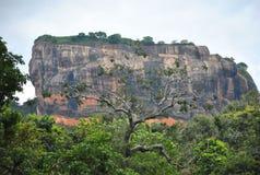 Roccia Sri Lanka di Sigiriya Immagini Stock Libere da Diritti
