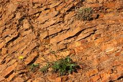 Roccia stratificata Fotografie Stock