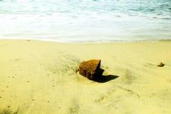 Roccia sulla spiaggia Fotografie Stock Libere da Diritti