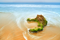 Roccia sulla spiaggia con le alghe verdi immagini stock libere da diritti