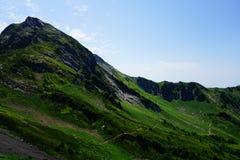 Roccia verde Fotografie Stock Libere da Diritti