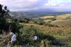 Rocha,乌拉圭土地和小山  库存照片