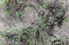 Rocha áspera da pedra do granito imagem de stock royalty free