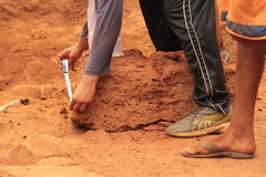 Rocha arqueológico de medição Imagens de Stock Royalty Free