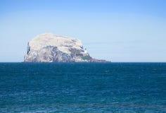 A rocha baixa Imagens de Stock