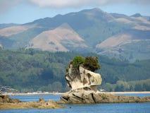 Rocha bonita no parque nacional Nova Zelândia de Abel Tasman Imagens de Stock