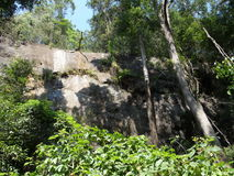 Rocha cercada por árvores fotografia de stock royalty free