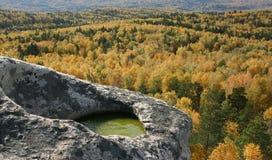 Rocha cinzenta com o lago verde pequeno sobre a madeira do outono Fotografia de Stock Royalty Free