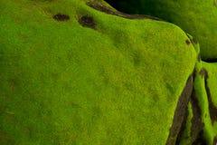 Rocha com musgo no verde de musgo da costa fotos de stock
