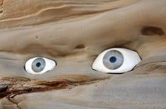 Rocha com olhos Fotografia de Stock