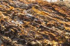 Rocha com vários minerais Fotos de Stock