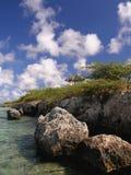 Rocha coral Fotografia de Stock Royalty Free