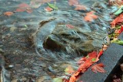 Rocha da água Fotografia de Stock Royalty Free
