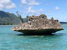 Rocha de cristal Maurícia foto de stock