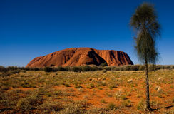 Rocha de Uluru - de Ayers Imagens de Stock Royalty Free