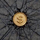 Rocha do dólar Fotografia de Stock Royalty Free
