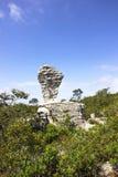 Rocha do Fifa no parque nacional foto de stock