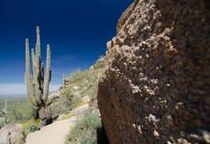 A rocha do Saguaro e do granito no pico do pináculo arrasta Fotografia de Stock