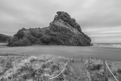 Rocha dos leões na praia de Phia Foto de Stock