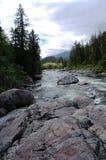 Rocha e rio Imagem de Stock