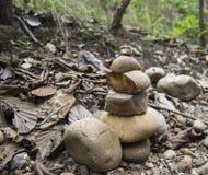 Rocha empilhada na floresta Fotos de Stock Royalty Free