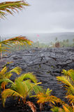 Rocha endurecida da lava foto de stock royalty free