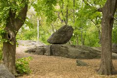 Rocha grande no parque Fotos de Stock Royalty Free