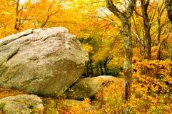 Rocha maciça cercada pelas folhas amarelas. Imagens de Stock