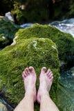 Rocha Mossy Fotos de Stock