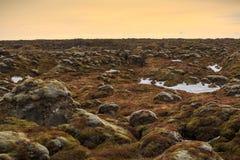 Rocha Mossy da lava Imagem de Stock