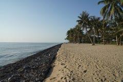 Rocha na praia Imagem de Stock Royalty Free