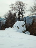Rocha nevado Fotografia de Stock